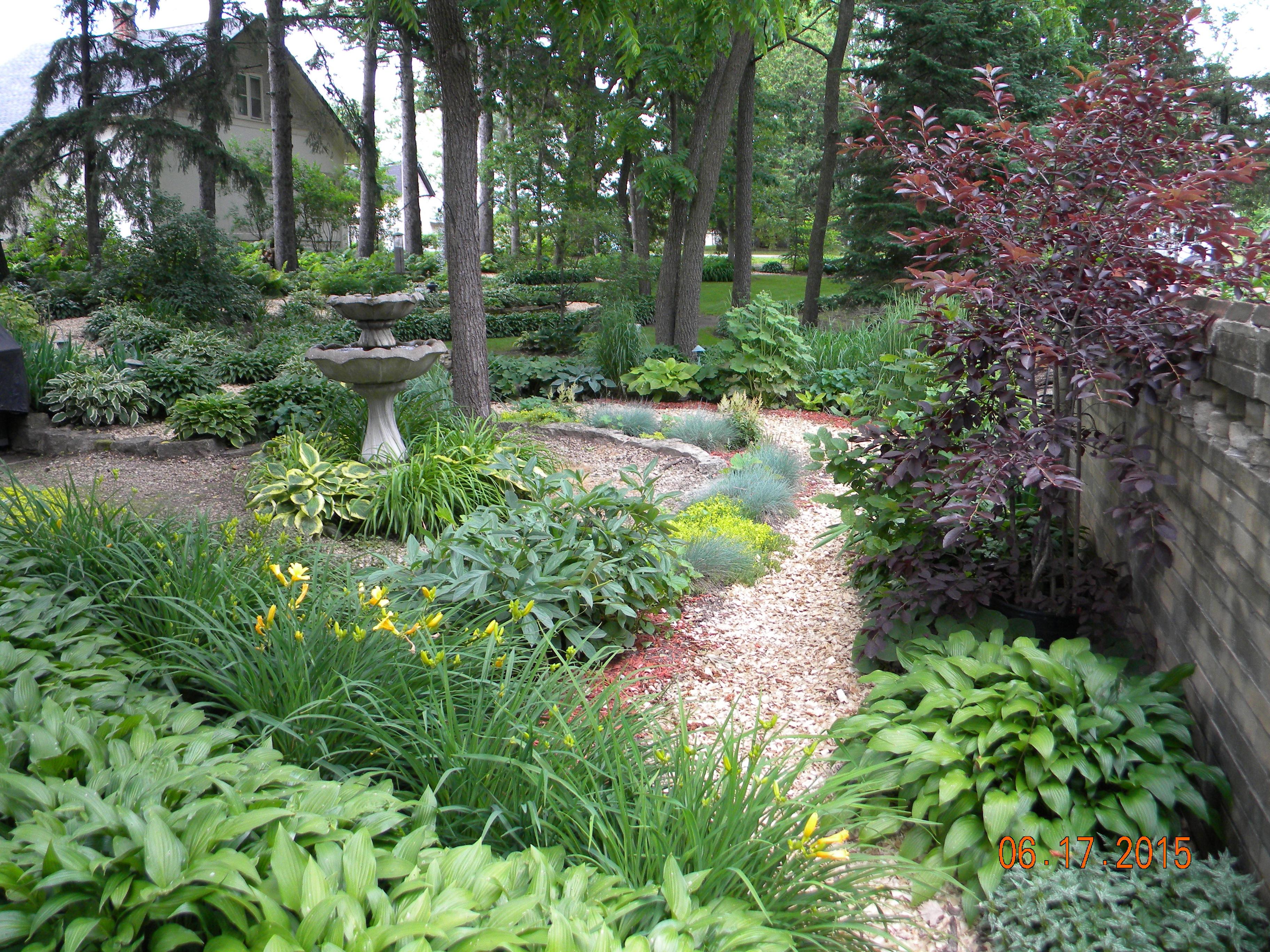 pm woodland garden 1